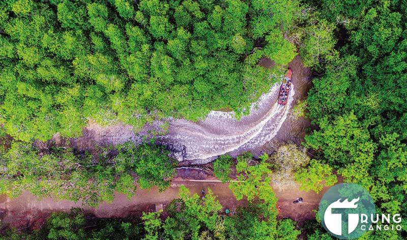 Cần Giờ sẽ trở thành mũi nhọn du lịch sinh thái và nghỉ dưỡng của Thành Phố